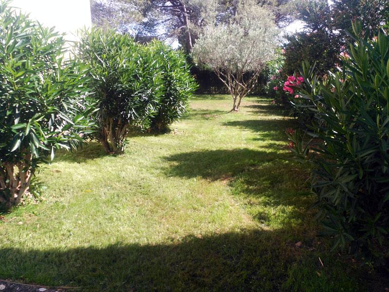 jardineriaypaisajismo1