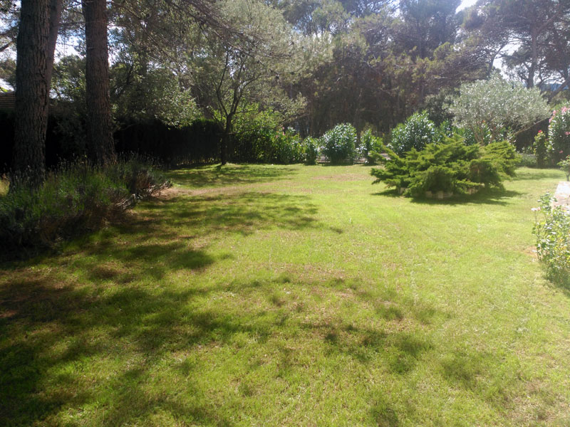 jardineriaypaisajismo2